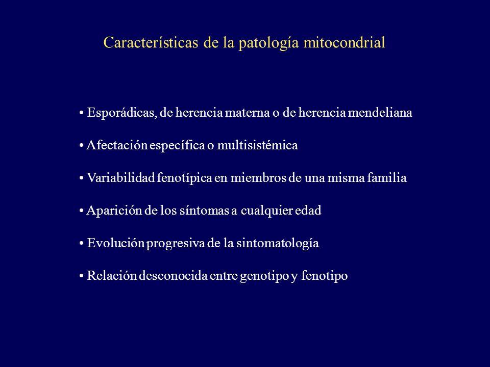 Características de la patología mitocondrial