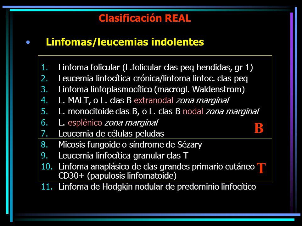 B T Clasificación REAL Linfomas/leucemias indolentes