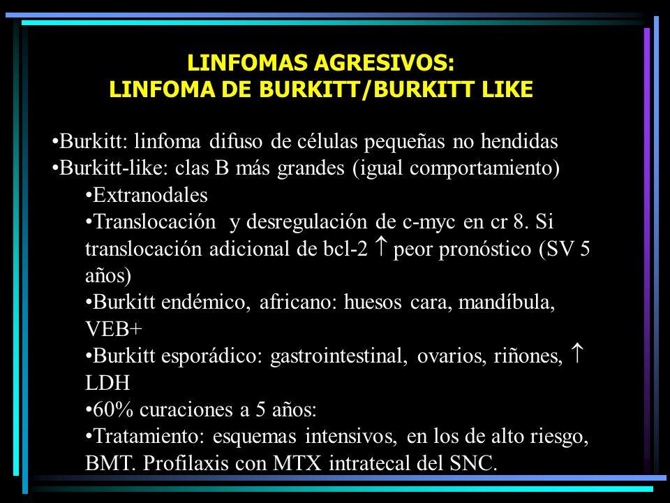 LINFOMAS AGRESIVOS: LINFOMA DE BURKITT/BURKITT LIKE