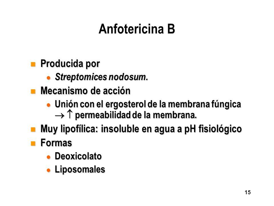 Anfotericina B Producida por Mecanismo de acción