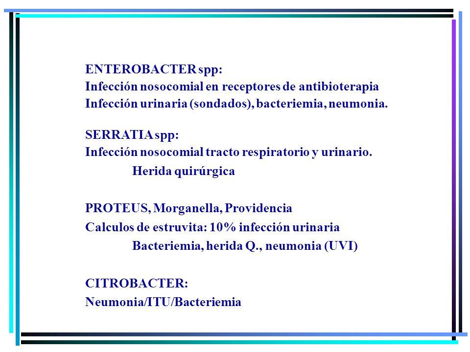 ENTEROBACTER spp:Infección nosocomial en receptores de antibioterapia. Infección urinaria (sondados), bacteriemia, neumonia.