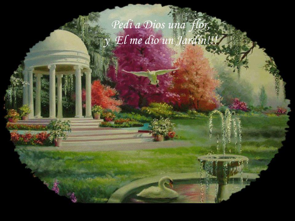 Pedi a Dios una flor, y El me dio un Jardín!!!