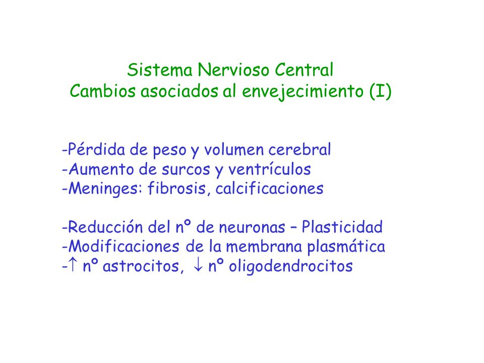Sistema Nervioso Central Cambios asociados al envejecimiento (I)