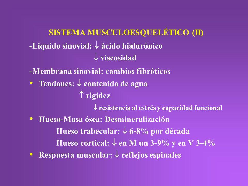 SISTEMA MUSCULOESQUELÉTICO (II)