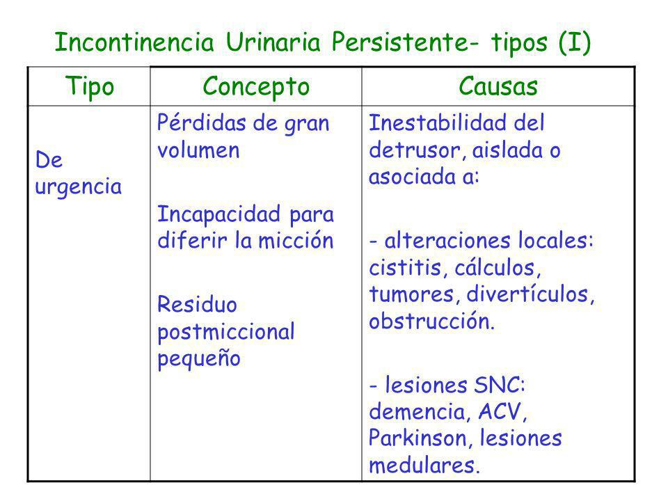 Incontinencia Urinaria Persistente- tipos (I)