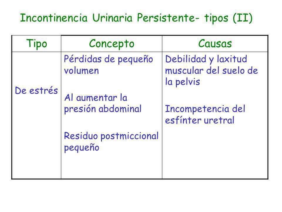 Incontinencia Urinaria Persistente- tipos (II)