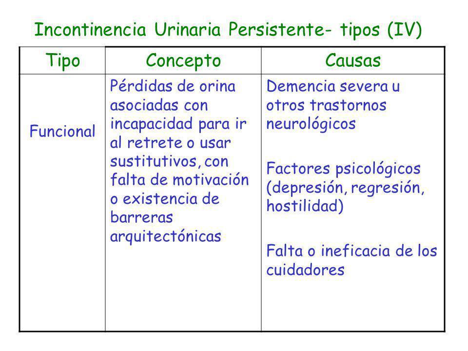 Incontinencia Urinaria Persistente- tipos (IV)