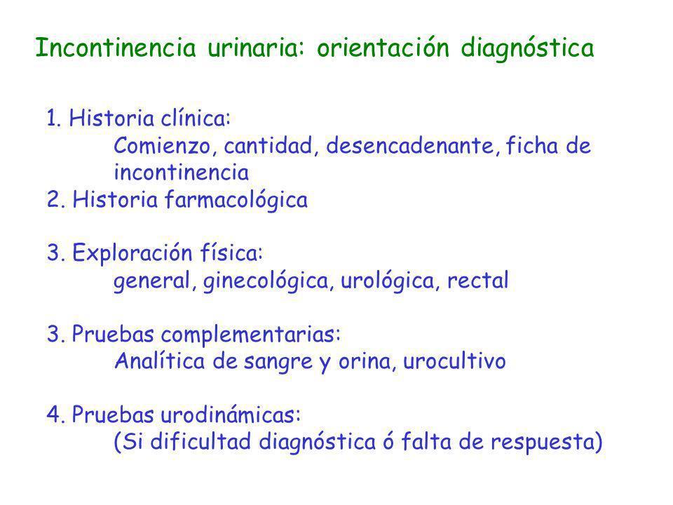 Incontinencia urinaria: orientación diagnóstica