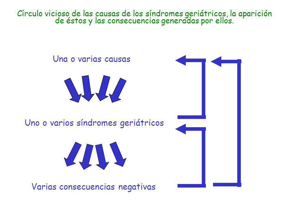 Varias consecuencias negativas Una o varias causas