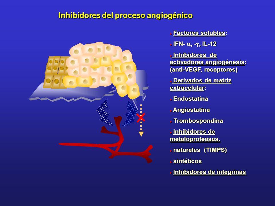 Inhibidores del proceso angiogénico