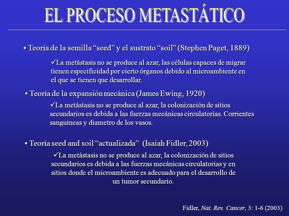 EL PROCESO METASTÁTICO