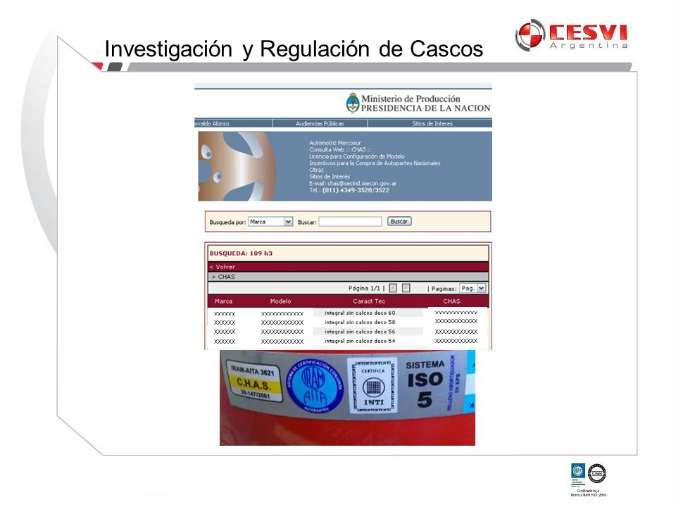 Investigación y Regulación de Cascos
