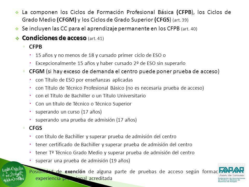 Condiciones de acceso (art. 41)