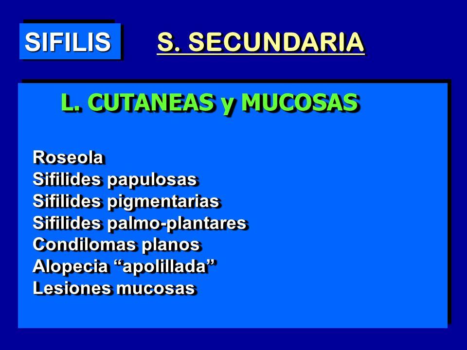 SIFILIS S. SECUNDARIA L. CUTANEAS y MUCOSAS Roseola