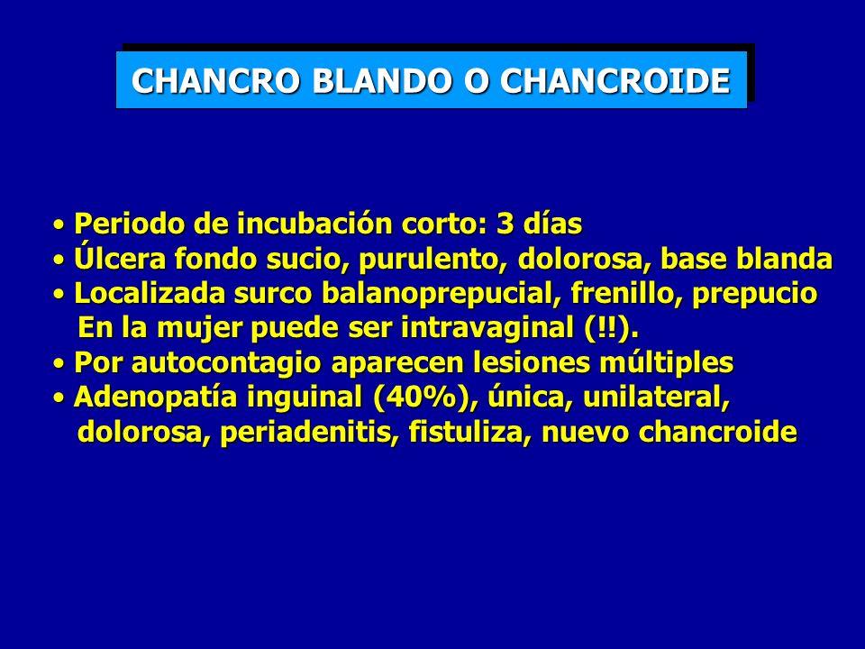 CHANCRO BLANDO O CHANCROIDE