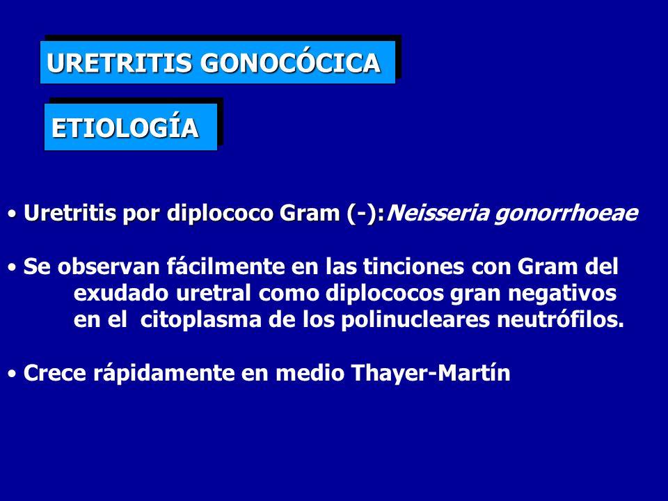 URETRITIS GONOCÓCICA ETIOLOGÍA