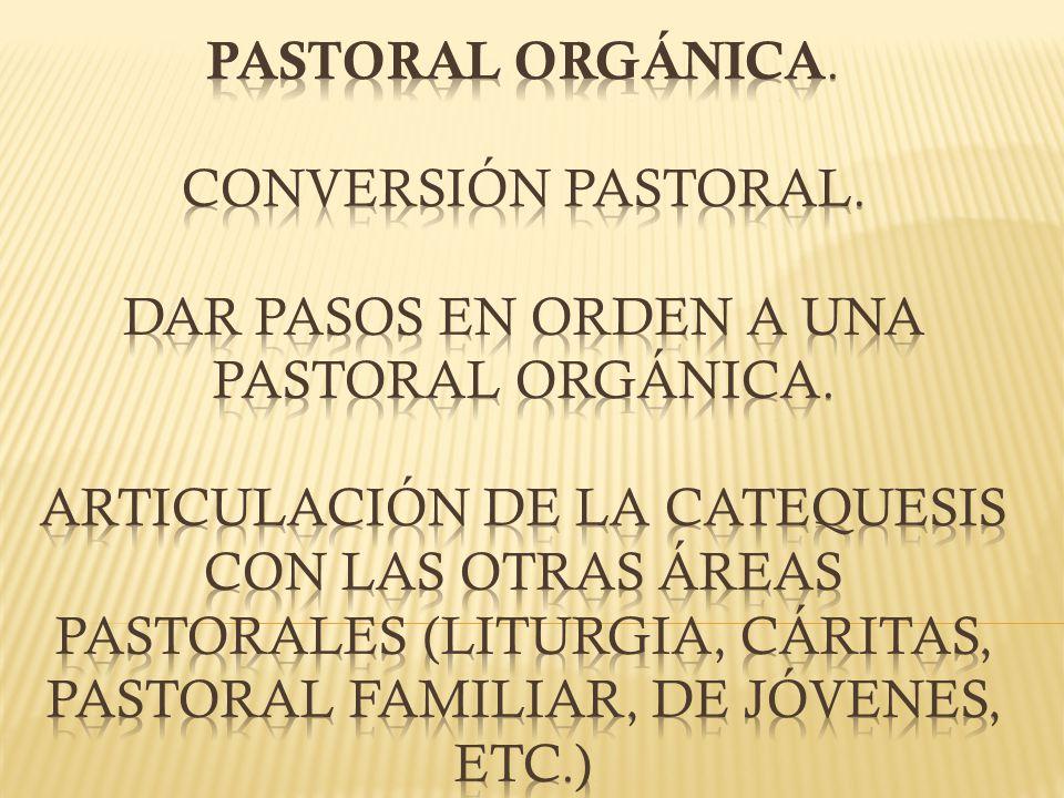 PASTORAL ORGÁNICA. Conversión pastoral