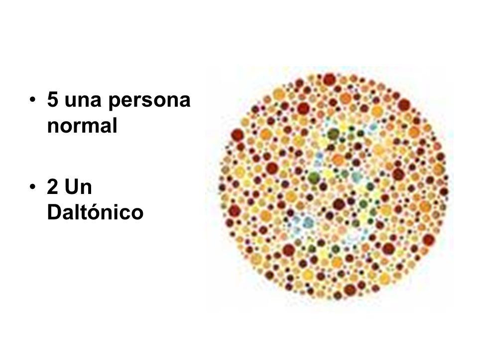 5 una persona normal 2 Un Daltónico