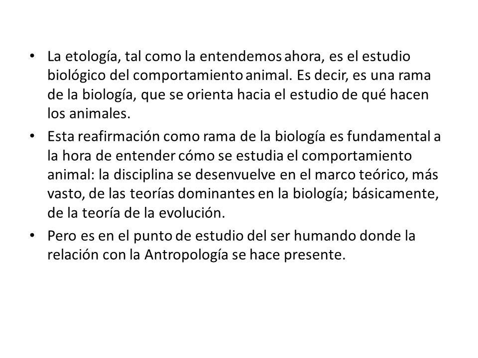 La etología, tal como la entendemos ahora, es el estudio biológico del comportamiento animal. Es decir, es una rama de la biología, que se orienta hacia el estudio de qué hacen los animales.