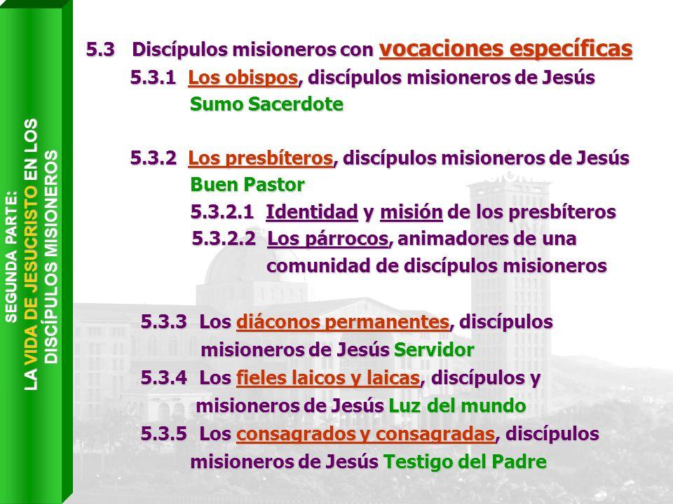 Capítulo VI LA COMUNIÓN DE LOS DISCÍPULOS MISIONEROS EN LA IGLESIA