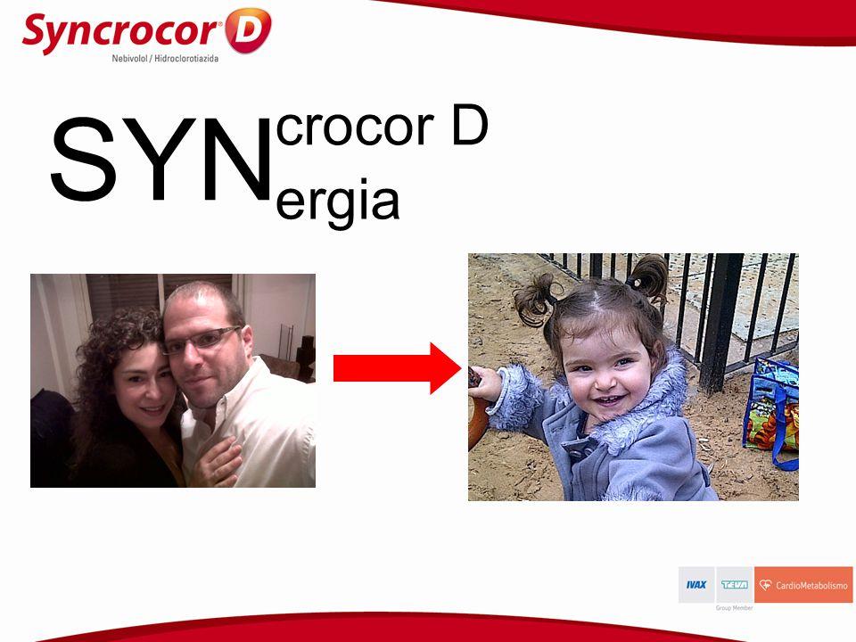 SYN crocor D ergia