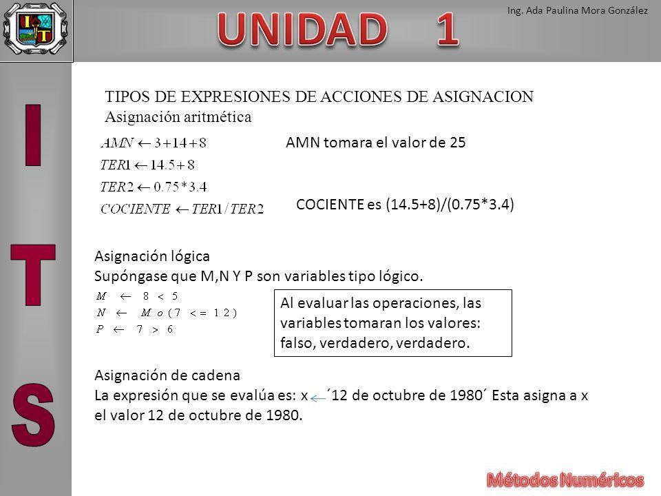 TIPOS DE EXPRESIONES DE ACCIONES DE ASIGNACION