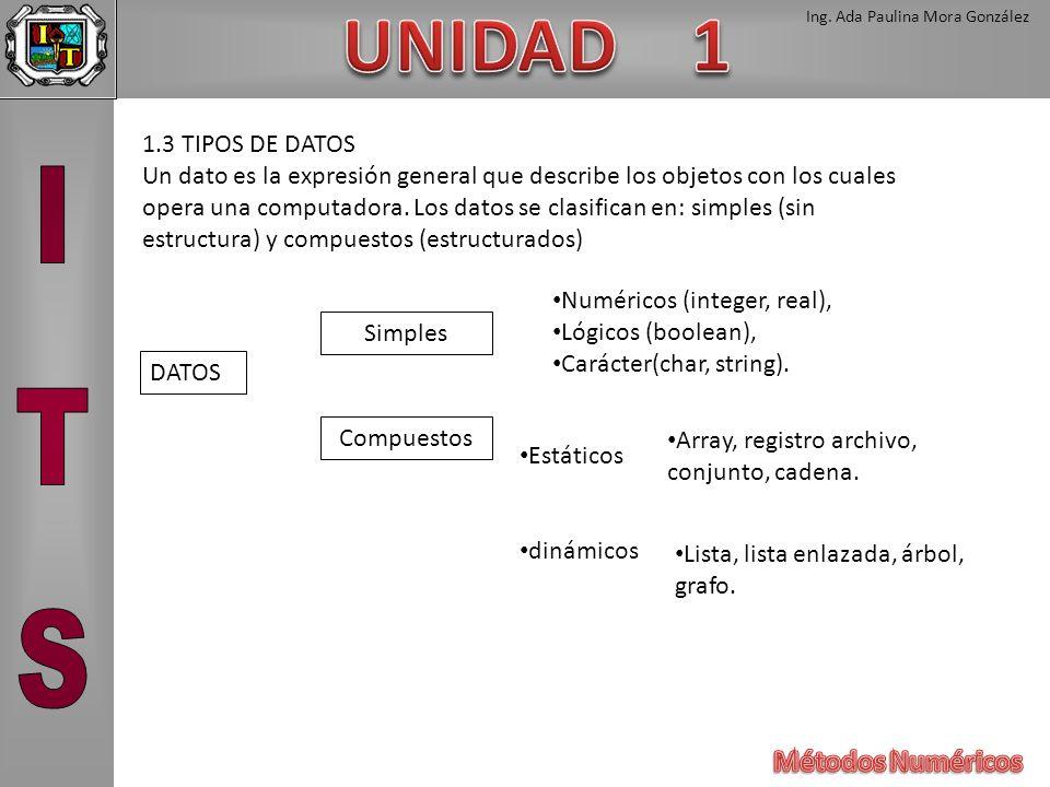 1.3 TIPOS DE DATOS