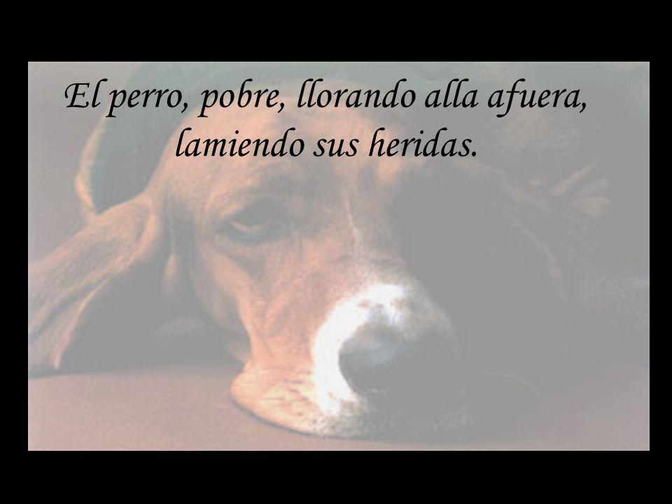 El perro, pobre, llorando alla afuera, lamiendo sus heridas.