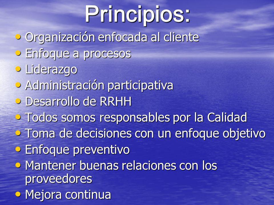 Principios: Organización enfocada al cliente Enfoque a procesos