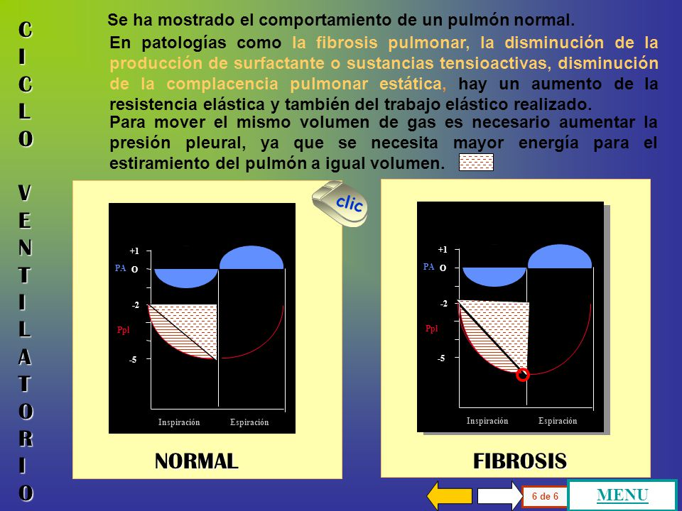 CICLO VENTILATORIO NORMAL FIBROSIS