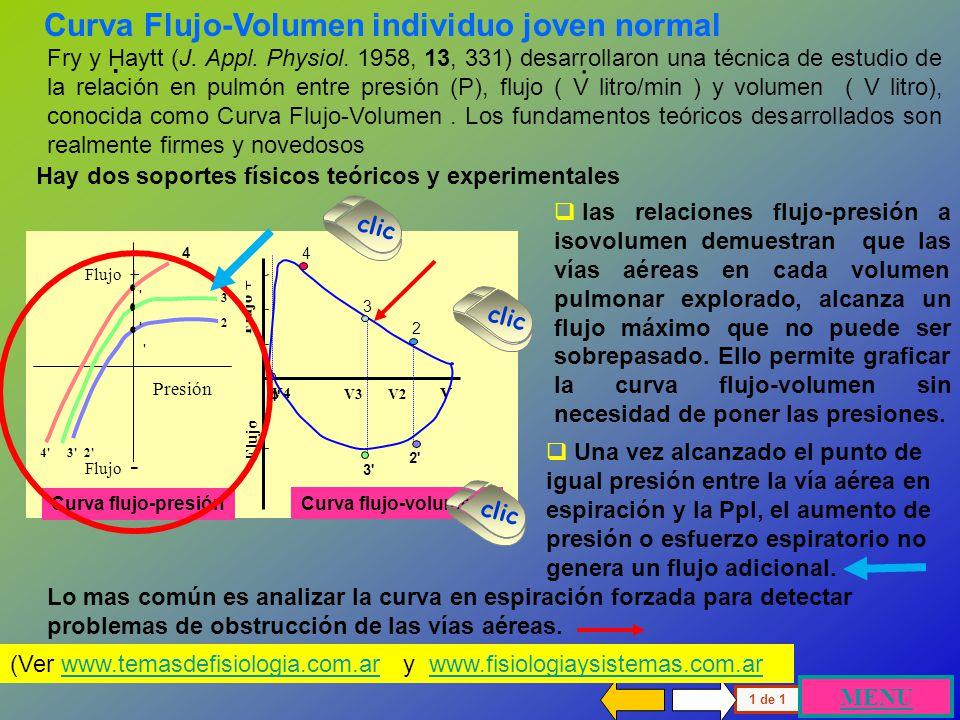 Curva Flujo-Volumen individuo joven normal