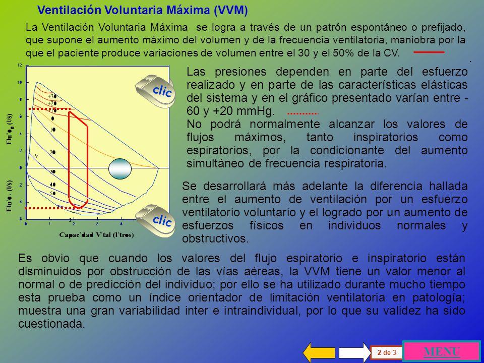 Ventilación Voluntaria Máxima (VVM)