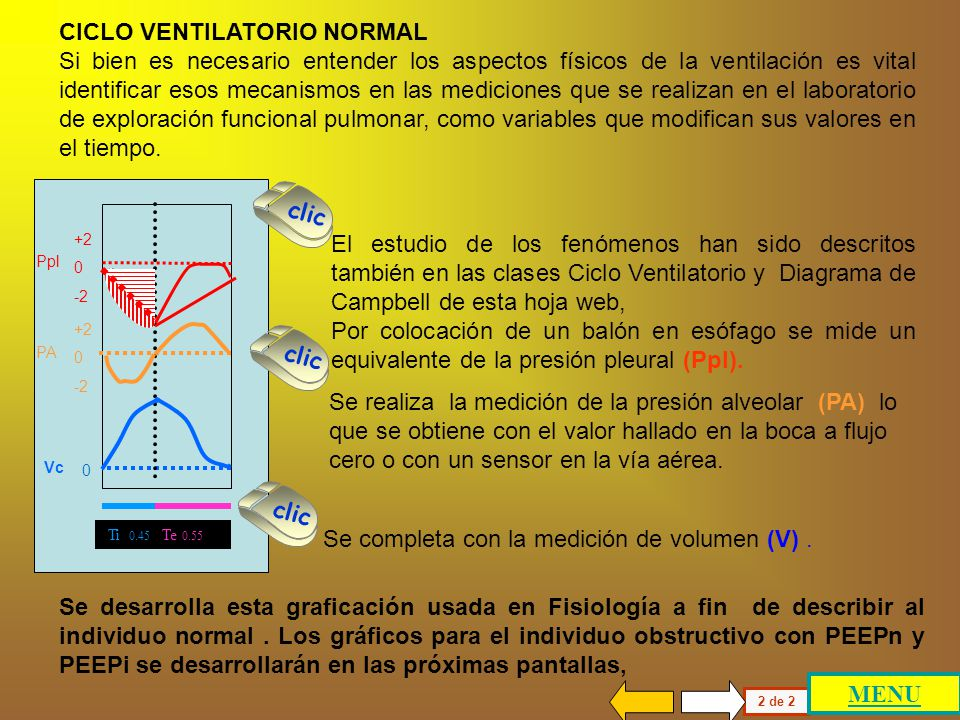 CICLO VENTILATORIO NORMAL