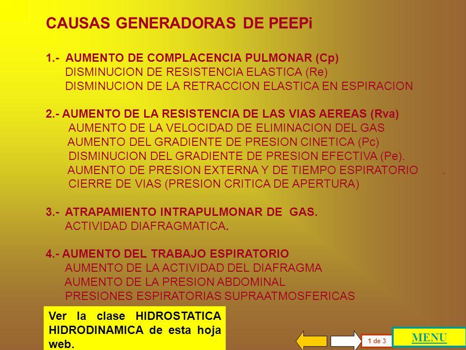 CAUSAS GENERADORAS DE PEEPi