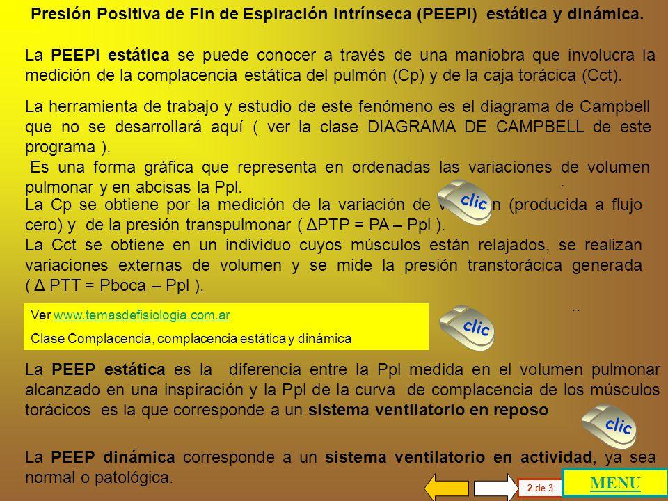 Presión Positiva de Fin de Espiración intrínseca (PEEPi) estática y dinámica.