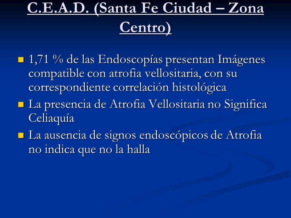 C.E.A.D. (Santa Fe Ciudad – Zona Centro)