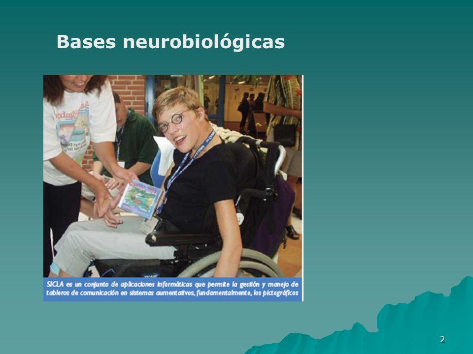 Bases neurobiológicas