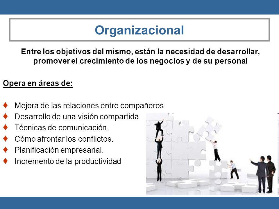 Organizacional Opera en áreas de: