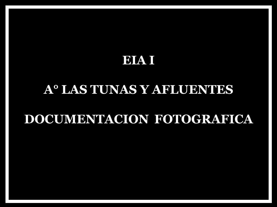 A° LAS TUNAS Y AFLUENTES DOCUMENTACION FOTOGRAFICA