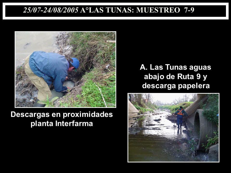 25/07-24/08/2005 A°LAS TUNAS: MUESTREO 7-9 Descargas en proximidades