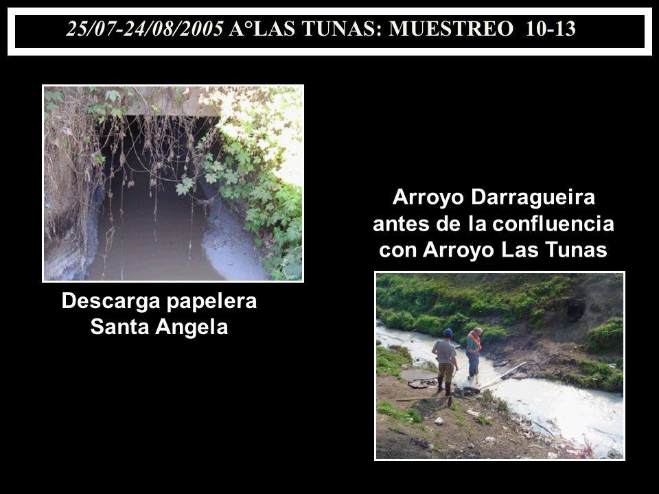 25/07-24/08/2005 A°LAS TUNAS: MUESTREO 10-13 antes de la confluencia