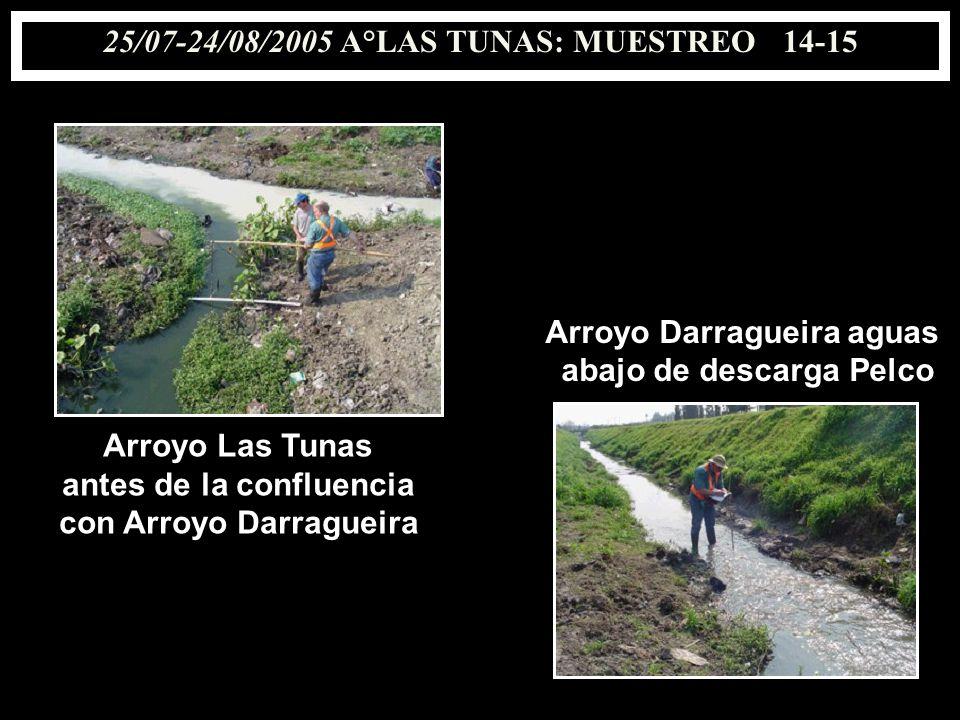 25/07-24/08/2005 A°LAS TUNAS: MUESTREO 14-15 antes de la confluencia