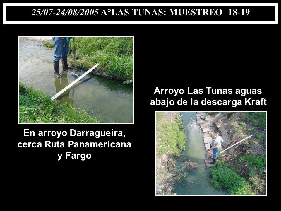 25/07-24/08/2005 A°LAS TUNAS: MUESTREO 18-19 cerca Ruta Panamericana