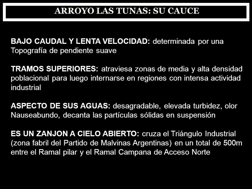 ARROYO LAS TUNAS: SU CAUCE