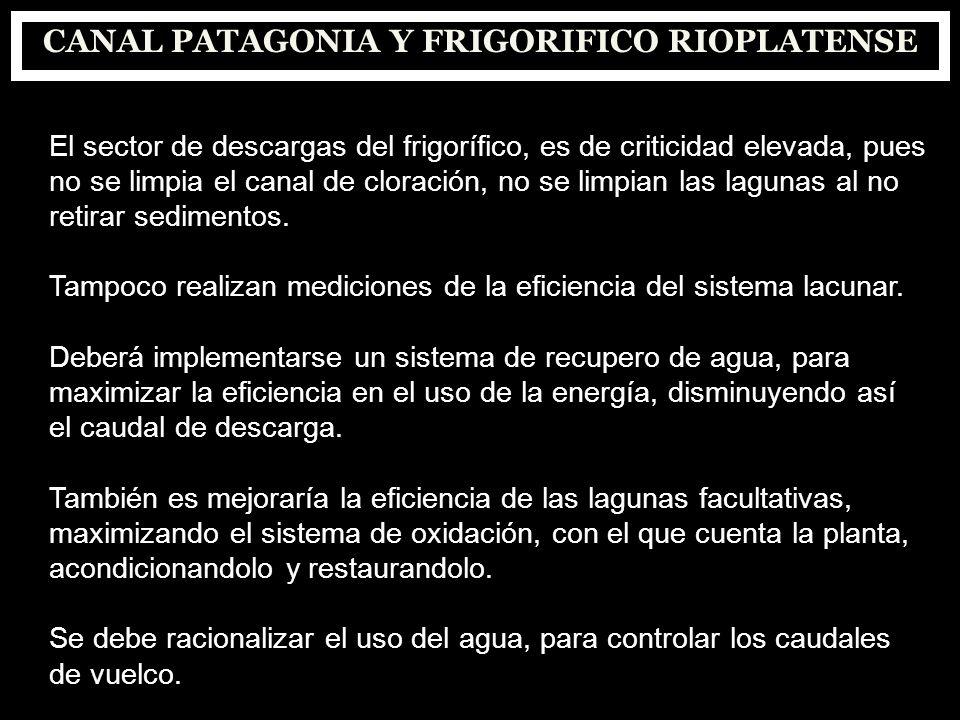 CANAL PATAGONIA Y FRIGORIFICO RIOPLATENSE
