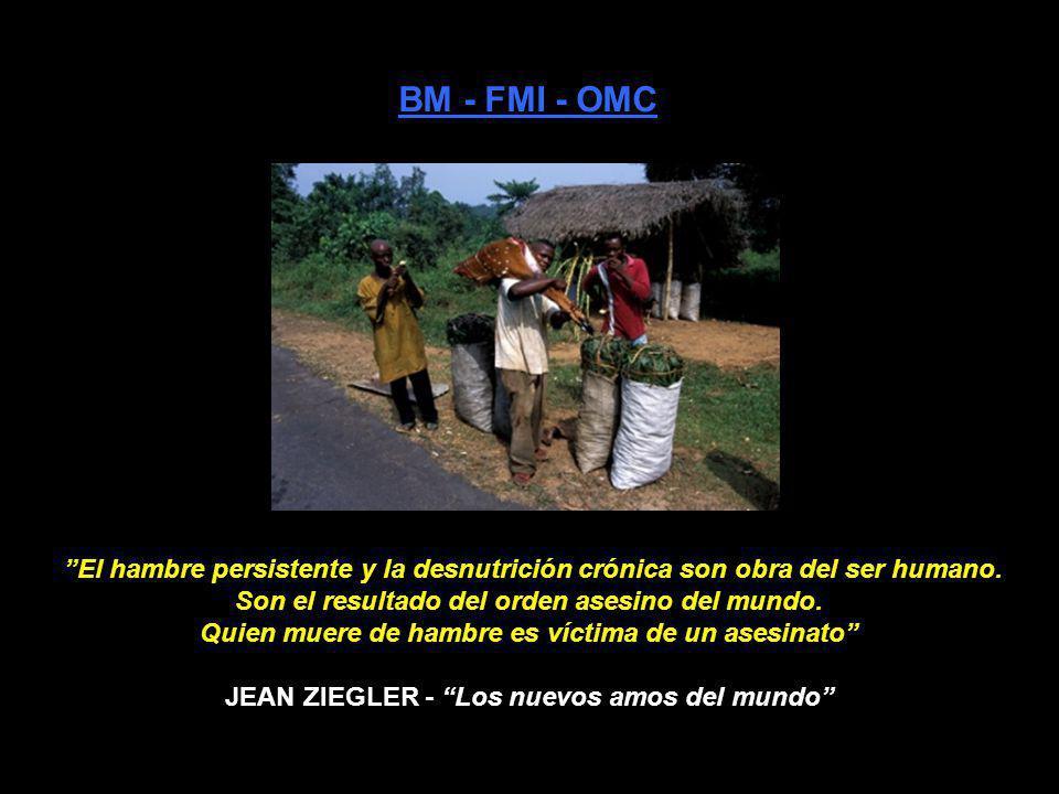JEAN ZIEGLER - Los nuevos amos del mundo
