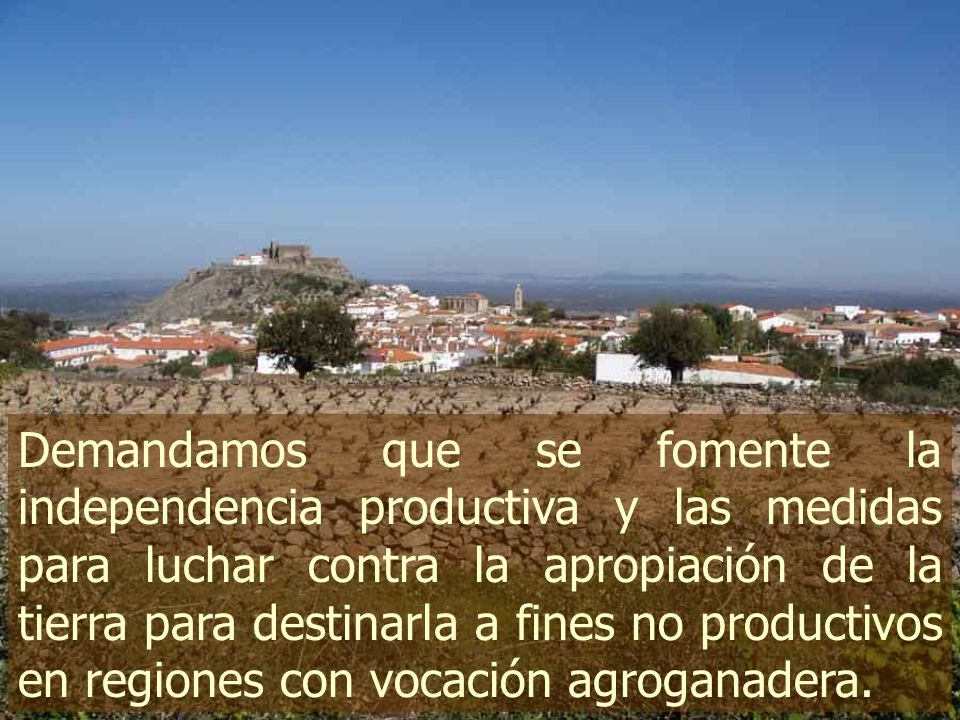 Demandamos que se fomente la independencia productiva y las medidas para luchar contra la apropiación de la tierra para destinarla a fines no productivos en regiones con vocación agroganadera.
