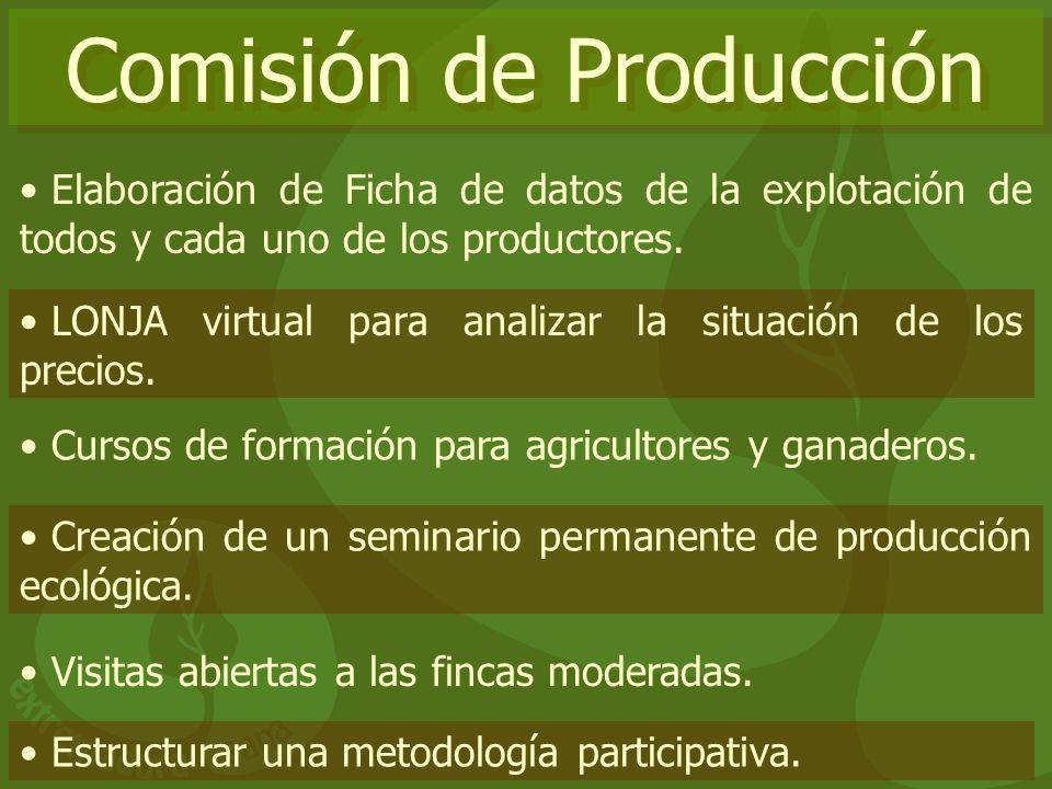 Comisión de Producción
