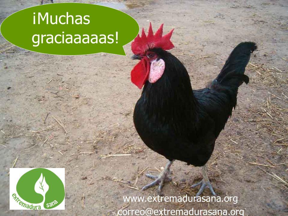 ¡Muchas graciaaaaas! www.extremadurasana.org