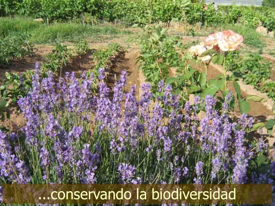 ...conservando la biodiversidad
